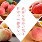 """<span class=""""title"""">『福島の桃、デリシャス』で話題の桃の品種やお値段は?どこで買える?</span>"""